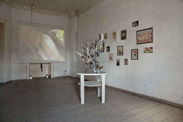 Erogenous Zone, installation view at Pony Royal